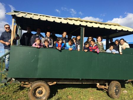 Visita en carreta por las edades del toro